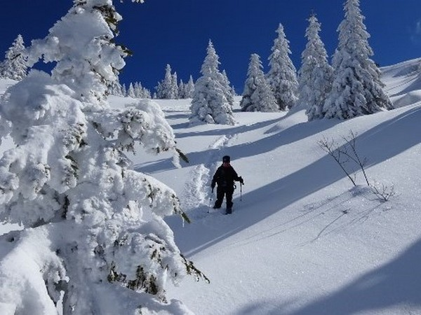 Week end sur les cr tes enneig es du vercors hiver - Office du tourisme martigues horaires ...