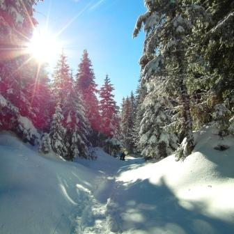 Noel magique a villard de lans hiver office du tourisme - Office du tourisme de villard de lans ...